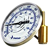 Pentair SL2D 50/220-Degree Fahrenheit Inline Thermometer with 1/2-Inch NPT Threaded for Solar Applications