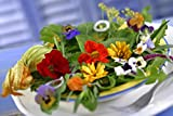 Wildflower Seeds Edible Flowers Mix - 1/2 Ounce Over 3,500 Open Pollinated Annual and Perennial Seeds (1)