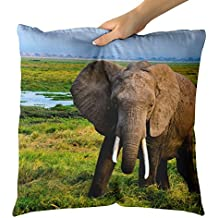 Westlake Art Decorative Throw Pillow - Elephant National - Photography Home Decor Living Room - 18x18in (x8r-61f-661)