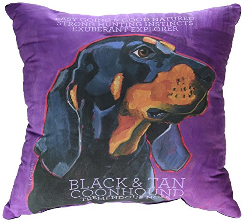 One Bella Casa Coonhound 1 Pillow, 16 by 16-Inch
