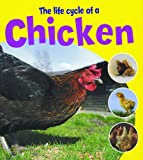 The Life Cycle of a Chicken, Ruth Thomson, 1404237151