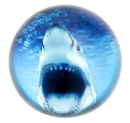 80 MM DOME PAPERWEIGHT GREAT WHITE SHARK, Case of 36