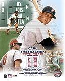 Carl Yastrzemski Boston Red Sox 8x10 Color Photo