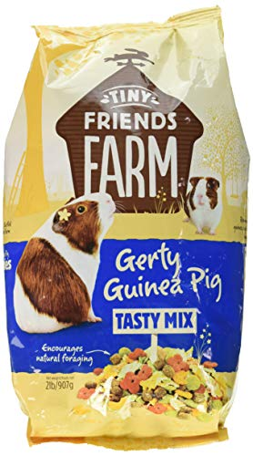 Supreme Gerty Scrummies Apple Strawberry Healthy Baked Bites For Guinea Pig ()