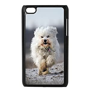Lovely Havana Doggy Ipod Touch 4 Cases, Case for Ipod Touch 4 4g 4th Funny Cute Tyquin - Black