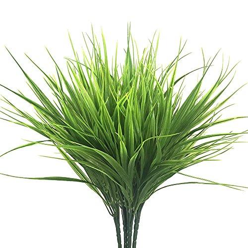grass pots - 5