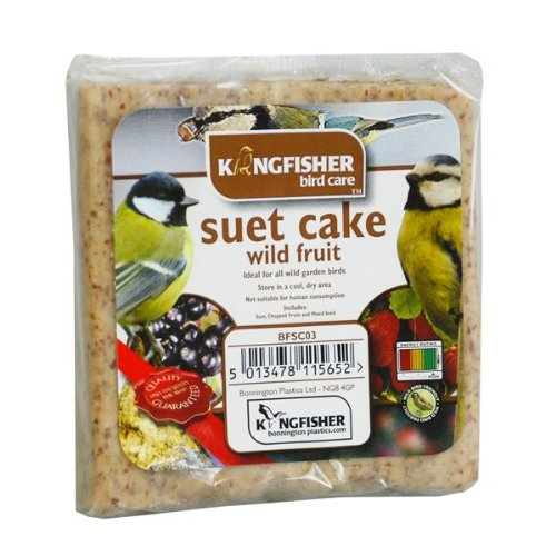 Kingfisher Wild Fruits de suif Alimentation BFSC03