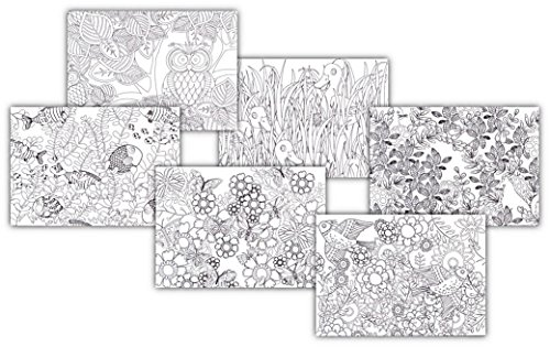 Coloring Your World - Nature Inspired Design Blank Note Card Gift (Adult Greeting Card)