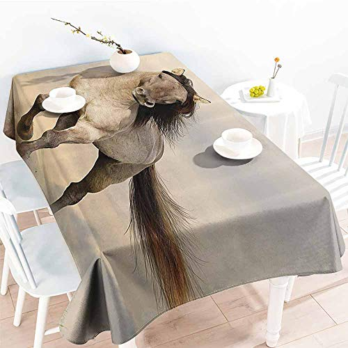Homrkey Polyester Tablecloth Animal Decor Collection Wild Young Stallion Horse Running at Sunset Male Power Nake Muscular Physique Nobility Photo Biege Washable Tablecloth W52 xL70