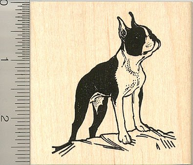 Large Boston Terrier Rubber Stamp - Wood Mounted