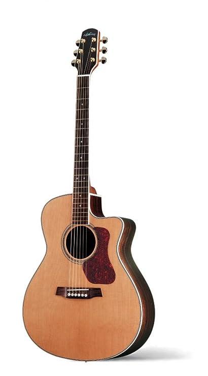 La serie de WALDEN NATURA G 630 CE TM de acero de GIGBAG de lujo guitarras. Pasa ...