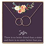 Dear Ava Sisters Gift Necklace: Gift for Sister, Sister Birthday Gift, Big Sister Gift, There is No Better Friend Than a Sister, 2 Interlocking Circles (Rose-Gold-Plated-Brass, NA)