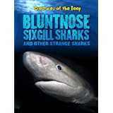 Bluntnose Sixgill Sharks and Other Strange Sharks (Creatures of the Deep)