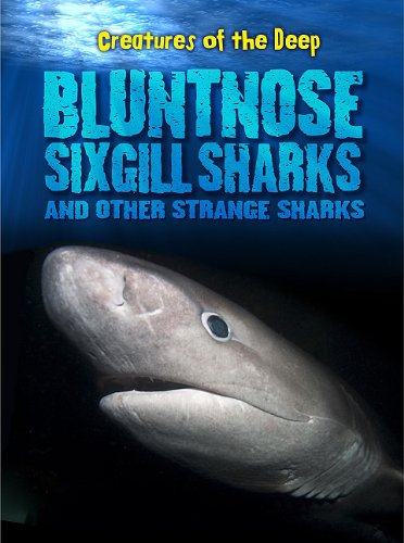 Bluntnose Sixgill Sharks and Other Strange Sharks (Creatures of the Deep) ebook