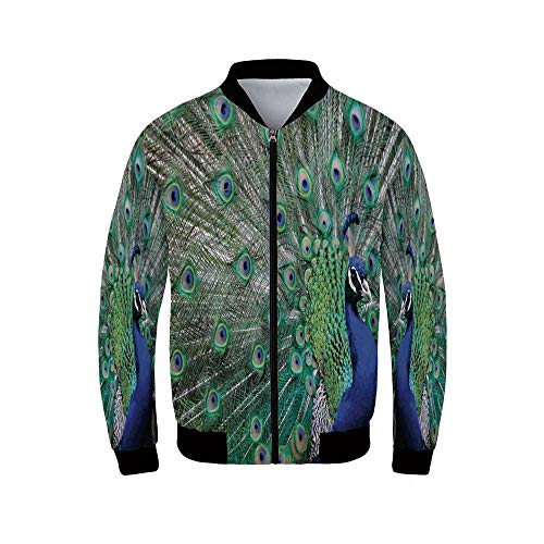 Peacock Men's Windproof Jacket,Peacock Displaying Elongated Majestic Feathers Open Wings Picture for Outdoor,S