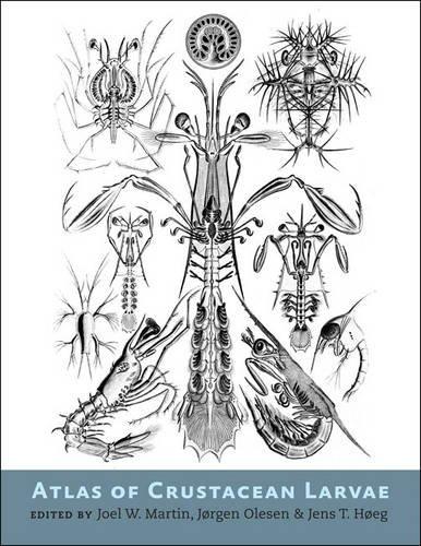 Johns Hopkins Atlas (Atlas of Crustacean Larvae)