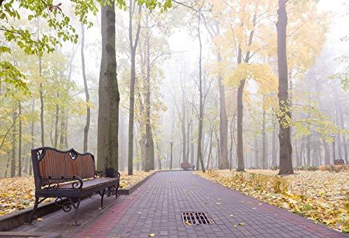 (Baocicco 10x6.5ft Vinyl Autumn Morning Park Backdrop Slight Fog Forest Fallen Yellow Leaves Covered Soil Brick Road Retro Iron Plank Park Bench Photo Shooting Background)
