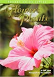 Flowers and Plants of Hawaii (Pocket Guide), Paul Wood, 0931548403
