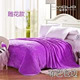 Znzbzt small blanket afternoon nap office single cute mini cover and small blankets winter student adult thick warm ,120x200cm [thick package of health, elegant Purple