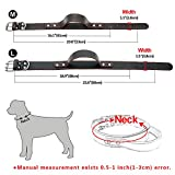 PET ARTIST Genuine Leather Dog Collar for Walking & Training Heavy Duty Dog Collar with Handle for Medium & Large Dogs Neck for