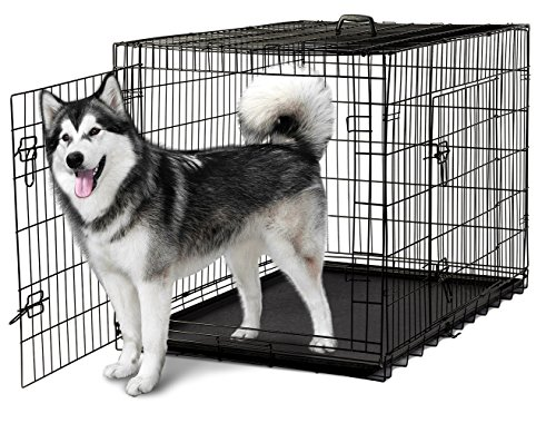 Paws Dog Cage - 9