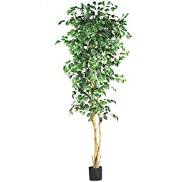 Nearly Natural 5210 Ficus Silk Tree, 7-Feet, Green