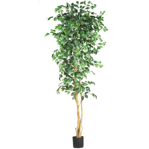 Nearly Natural 5210 Ficus Silk Tree, 7-Feet, (Pine Tree Natural Trunk)