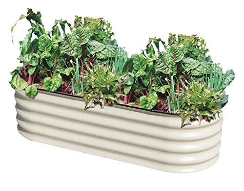(Metal Garden Box, Jungle Jane's Raised Garden Planter, 2 x 5 ft Outdoor Planter)