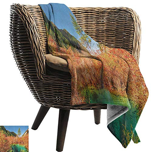 Sunnyhome Nature,Lightweight Blanket,Idyllic Fall Landscape with a Creek Among The Forest in National Park Valley Art 60