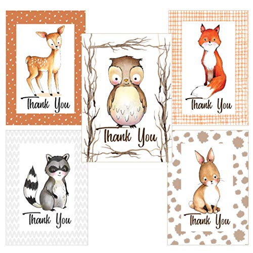 Thank You Cards Assorted Set for Any Occasion, Baby, Shower, Kids - Woodland Animal 35 Note Card Boxed Set, Blank Inside with 38 Envelopes - Made in The USA
