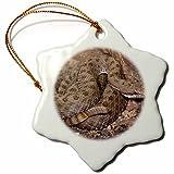 3dRose Twin-Spotted Rattlesnake, Se Arizona - Na02 Dno0765 - David Northcott - Snowflake Ornament, Porcelain, 3-inch (ORN_84056_1)