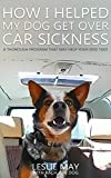 How I Helped My Dog Get Over Car Sickness: A thorough program that may help your dog too!