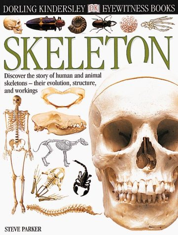 Eyewitness: Skeleton