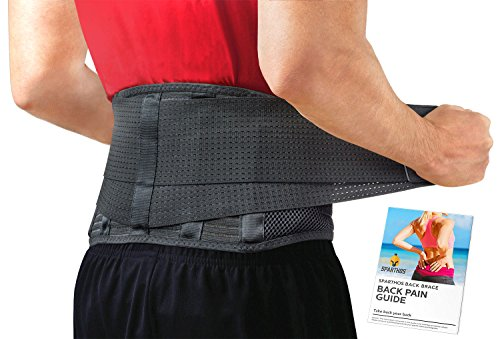 Back Brace by Sparthos - Immediate Relief for Back Pain, Herniated Disc, Sciatica, Scoliosis and more! - Breathable Mesh Design with Lumbar Pad - Adjustable Support Straps - Lower Back Belt [Size Med] ()