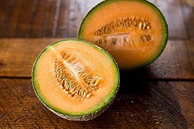 Hales Best Jumbo Cantaloupe Seeds