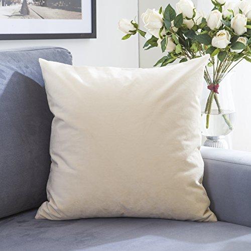 Brilliant Square Pillow Decorative Cushion