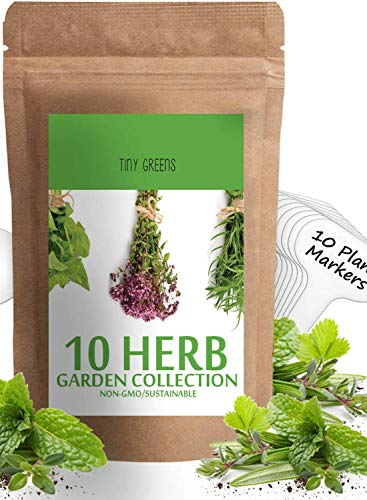 Herb Seeds Vault [10 Variety - 3000 Seeds]- Heirloom Non GMO - Herbs Seeds for Planting for Indoor and Outdoor | Herb Garden Seed Pack | Thyme, Mint, Chives, Dill, ()