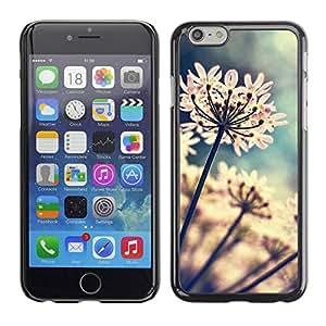 PC/Aluminum Funda Carcasa protectora para Apple Iphone 6 Garden Flowers Blossoming Sun / JUSTGO PHONE PROTECTOR