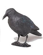 Star 140519 Corbeau Noir 38cm avec barreau et Pieds en Plastique