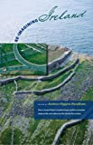 Re-Imagining Ireland: How a storied island is transforming its politics, economics, religious life, and culture for the 21st century