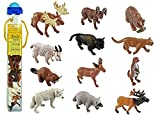 : Safari Ltd Wild Safari North American Wildlife TOOB With 12 Favorite Animal Toy Figurines Including a Mountain Lion, Wolf, Elk, Big Horn Ram, Bison, River Otter, Raccoon, Pronghorn Buck, Moose, Grizzly Bear and Beaver.
