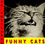 Funny Cats Postcard Book