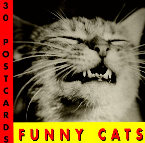 Funny Cats Postcard Book by Brand: Stewart, Tabori and Chang