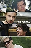 Trends International 1D Group Collage Wall Poster 22.375'' x 34''