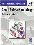 Small Animal Cardiology