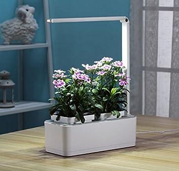 Amazon.com : AIBIS Indoor Garden Kit Hydroponics LED Growing ...