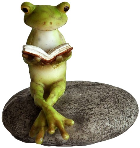 Top Collection Miniature Fairy Garden and Terrarium Frog Reading on Stone Statue Stone Critters Dog Figurine