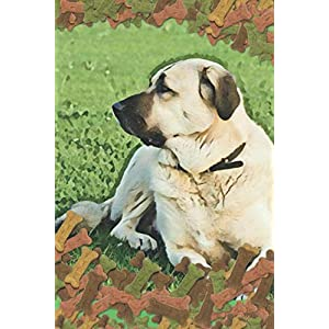 Anatolian Shepherd Dog Lovers Blank Lined Journal Notebook: A daily diary, composition or log book, gift idea for people who love Anatolian Shepherd dogs and puppies!! 12