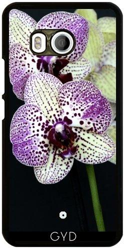 Funda para Htc U11 - Flor De La Orquídea Púrpura Exótica by WonderfulDreamPicture