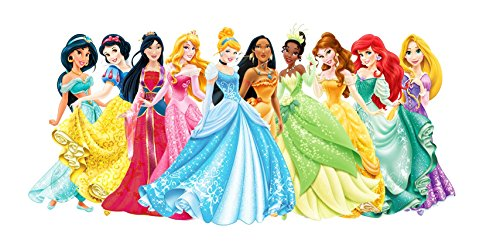 Disney Princess 1/4 Sheet Edible Photo Birthday Cake Topper Frosting Sheet (Disney Princess Icing)